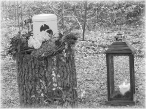 Baumbestattung
