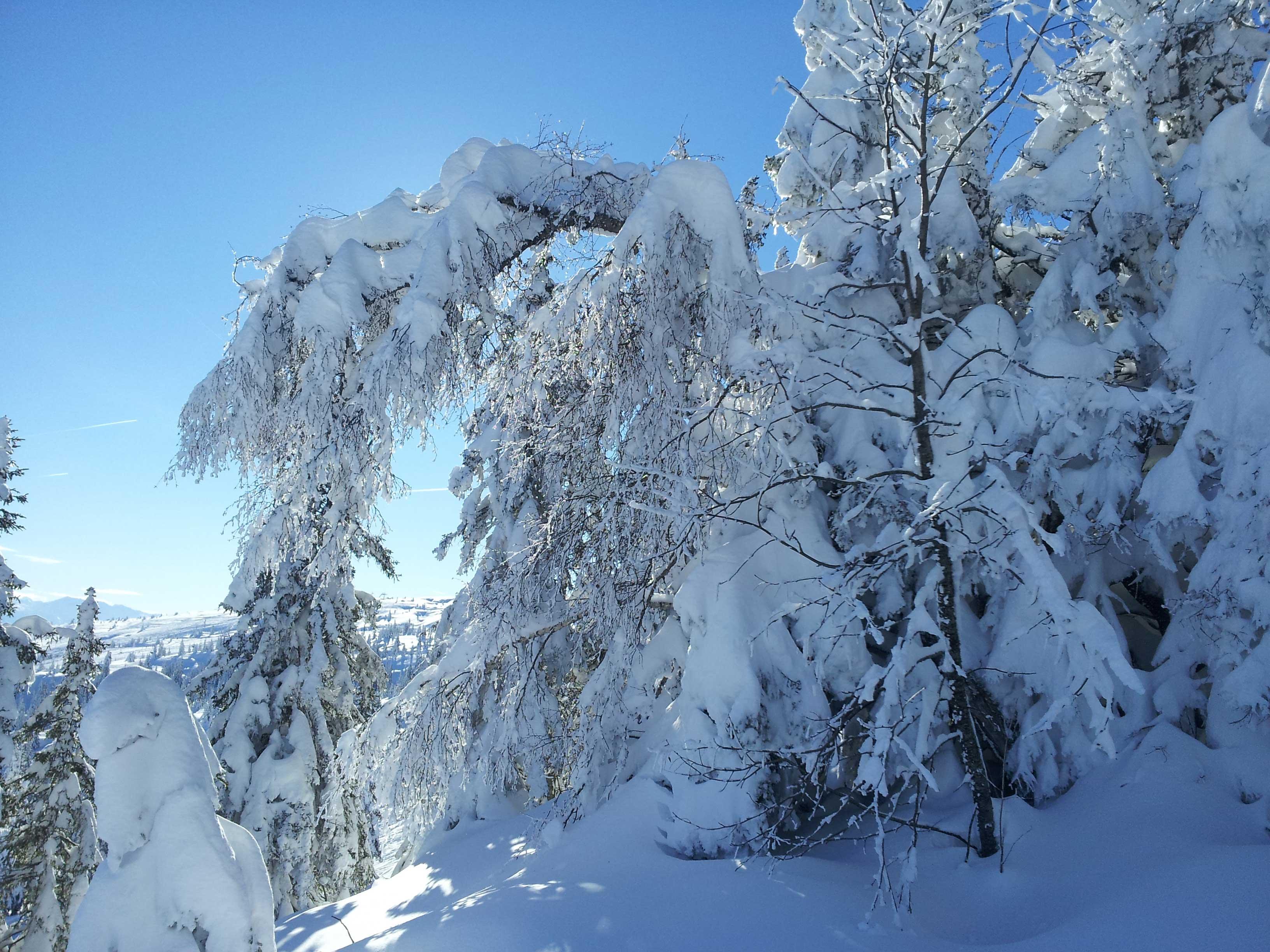 vue hivernale