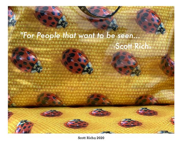 Scott Rich® 2020