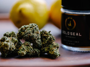 What are Cannabis Terpenes and What Do They Do?