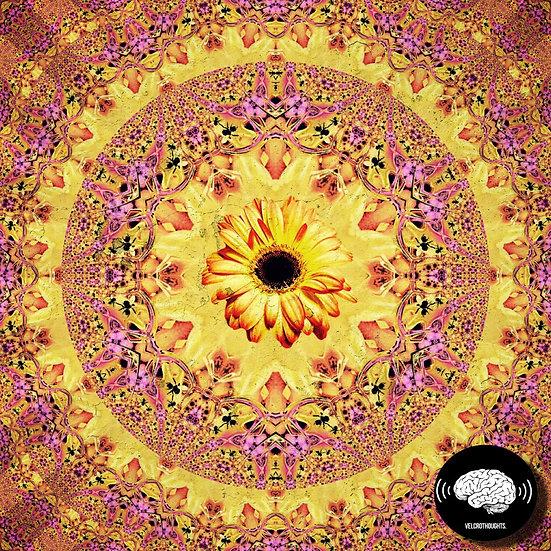 Untitled Sunflower Pattern Print.