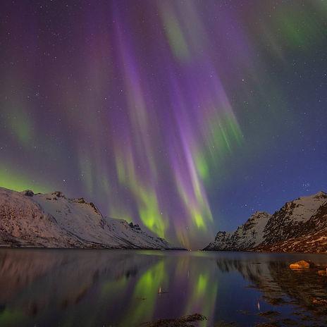 Magic night at Ersfjorden outside Tromsø