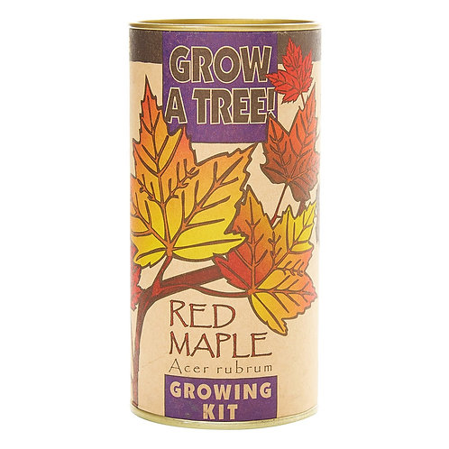 Red Maple | Seed Grow Kit