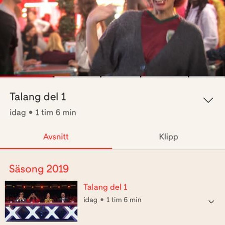 Miss Höök-Fertig i Talang 2019 på TV4