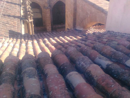 Limpieza de limas en la Colegiata y la Iglesia de San Francisco de Talavera
