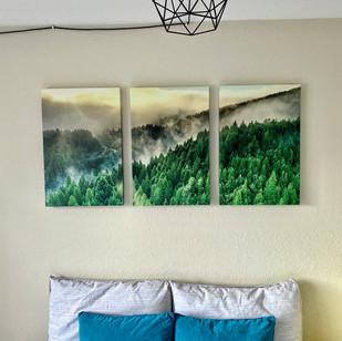 Golden Redwood Triptych