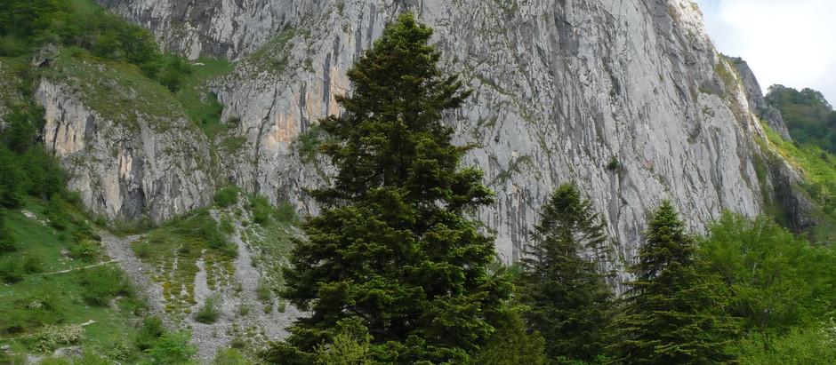 2020-05-17 A Lescun, tour du plateau de Sanchèse retour par cabane de la Cure