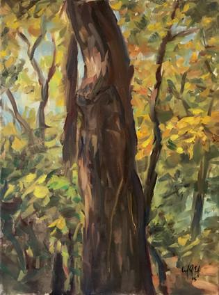 "18"" x 24"", oil on canvas"