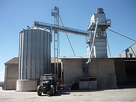 Casa Guardia, Cereales Tamarite de Litera, Maíz Waxy, Consumo Humano, Ceroso