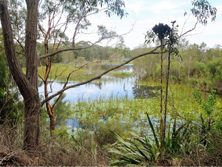 9th Jan 2019 Information Night- Port Stephens-Great Lakes World Heritage Estuary Proposal