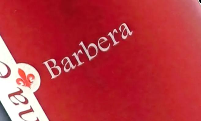 Barbera Klassisch