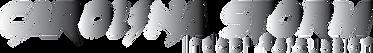 gradient storm logo.png