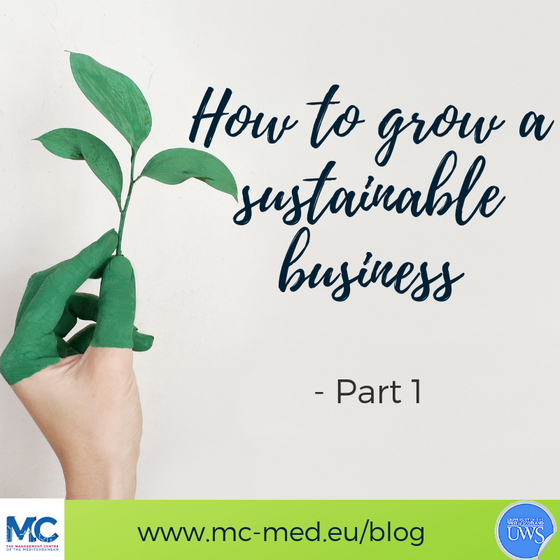 How to grow a sustainable business - Part 1