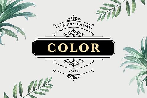 SS21 Womenswear Key Colors eBook