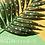 Thumbnail: SS21 Juniors Market Trend eBook