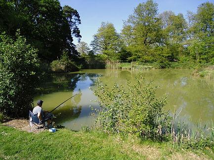 a man fishing at Thornham Magna Fishery lakes