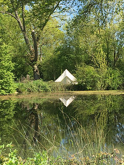view over the pond of a bell tent in woodland at swattesfield campsite in suffolk