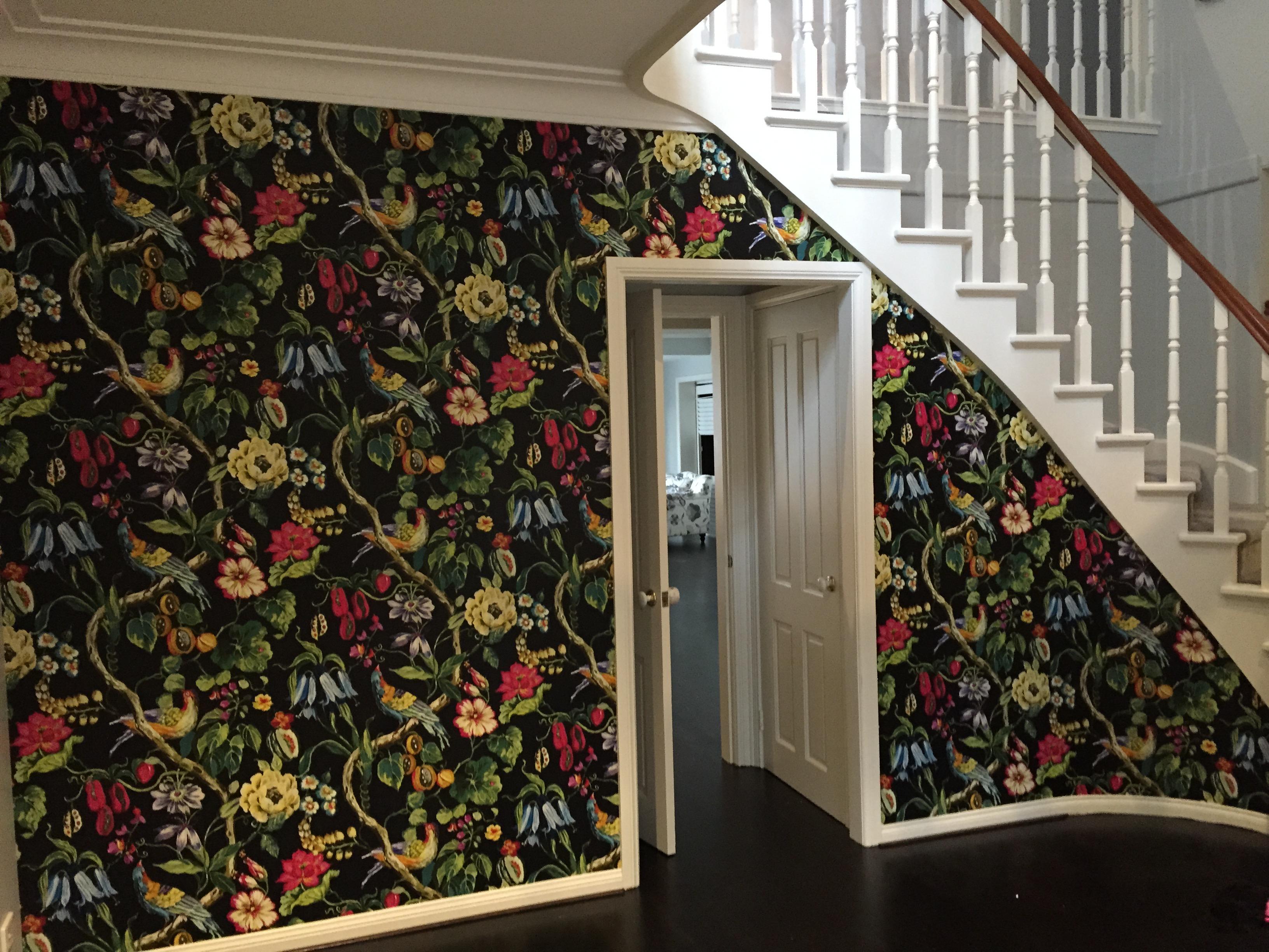 Bold wallpaper designers guild