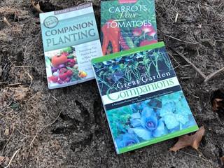 Garden Blog - Companion Plants