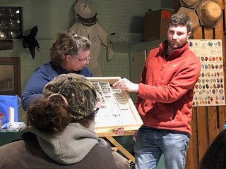 Conservation Ecologist Shares Bee Research