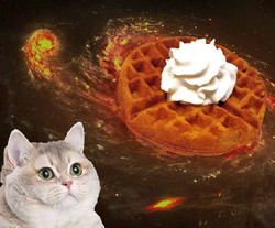 Waffle Space Cat