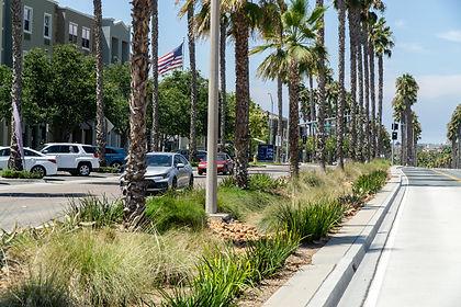 Cascade-LA_South Bay BRT.jpg