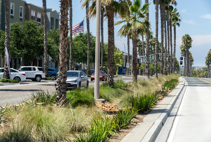 Palomar Street Median