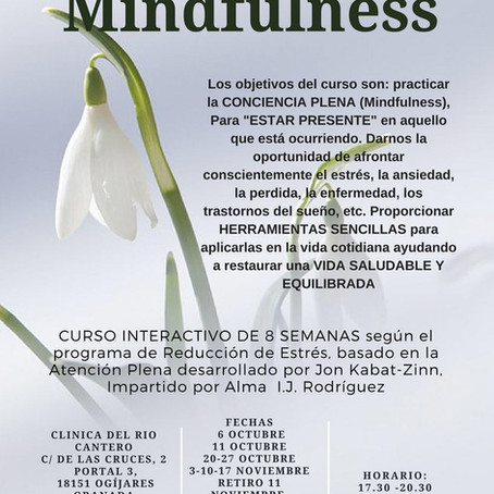 Curso interactivo de 8 semanas-Mindfulness
