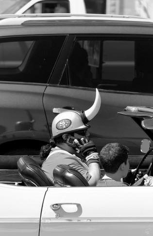 Bull at the Wheel