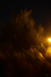 Reflected Nights VI