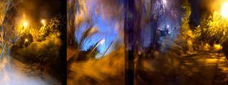 Reflected Nights IV