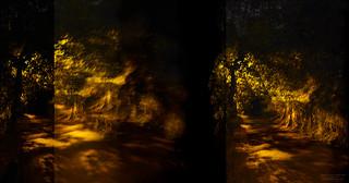 Reflected Nights I (Fragment)