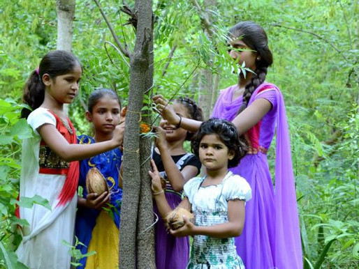 Indian Village Plants Trees for Girls