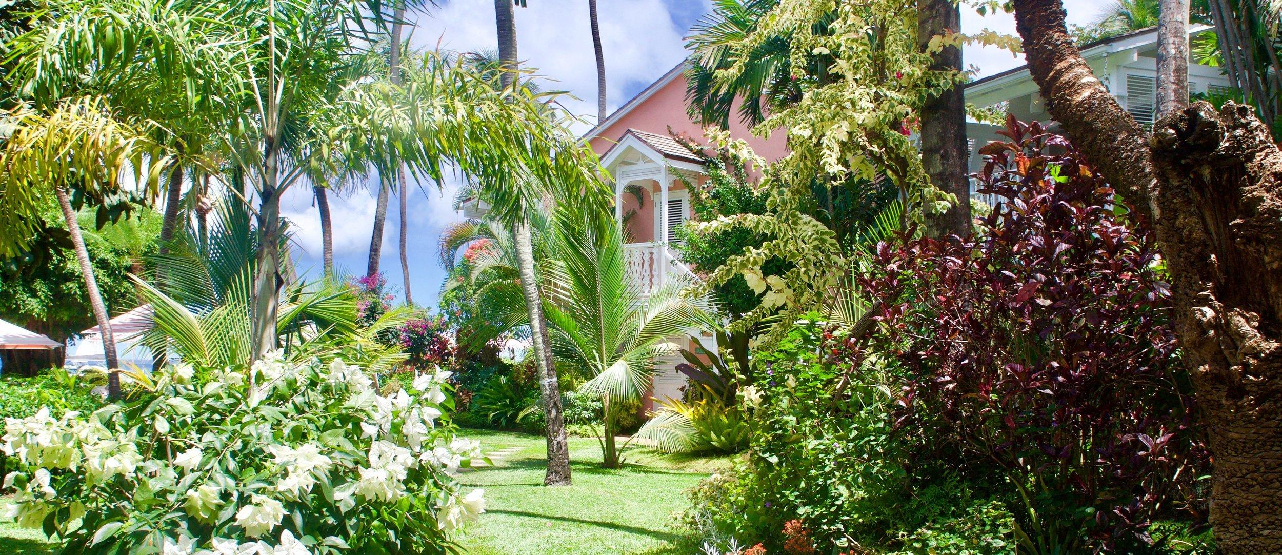 cobblers-cove-barbados-gardens