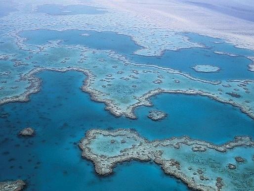 Australia Announces Blue Carbon Innitiative