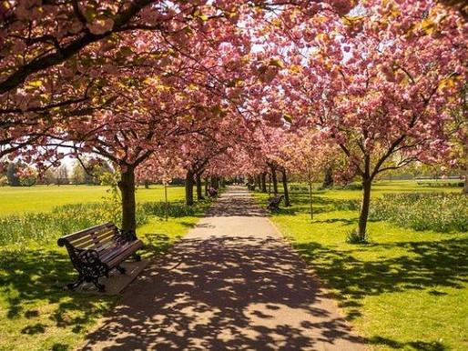 70 Hyde Parks Created