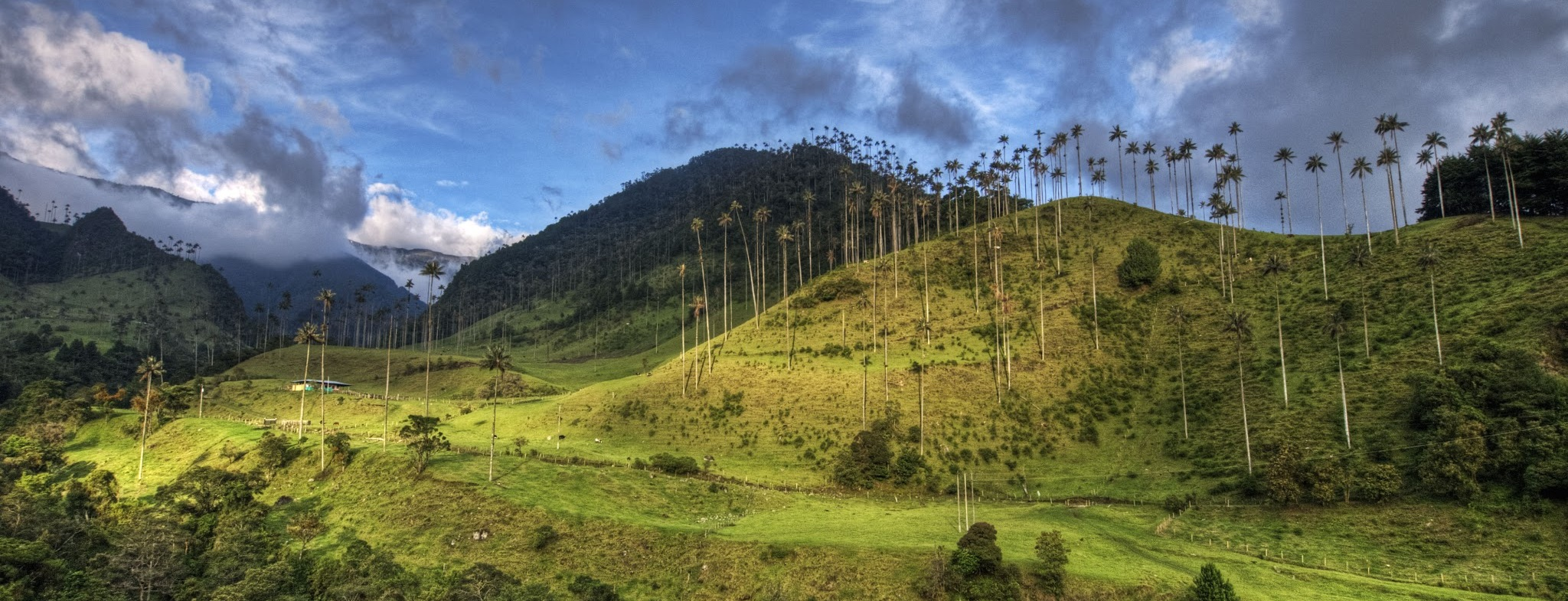 Salento-and-cocora-colombia