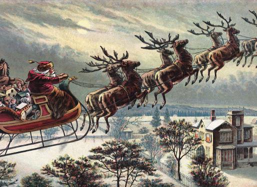 Santa's Reindeer Are All Female