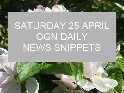 Today's Good News Snippets