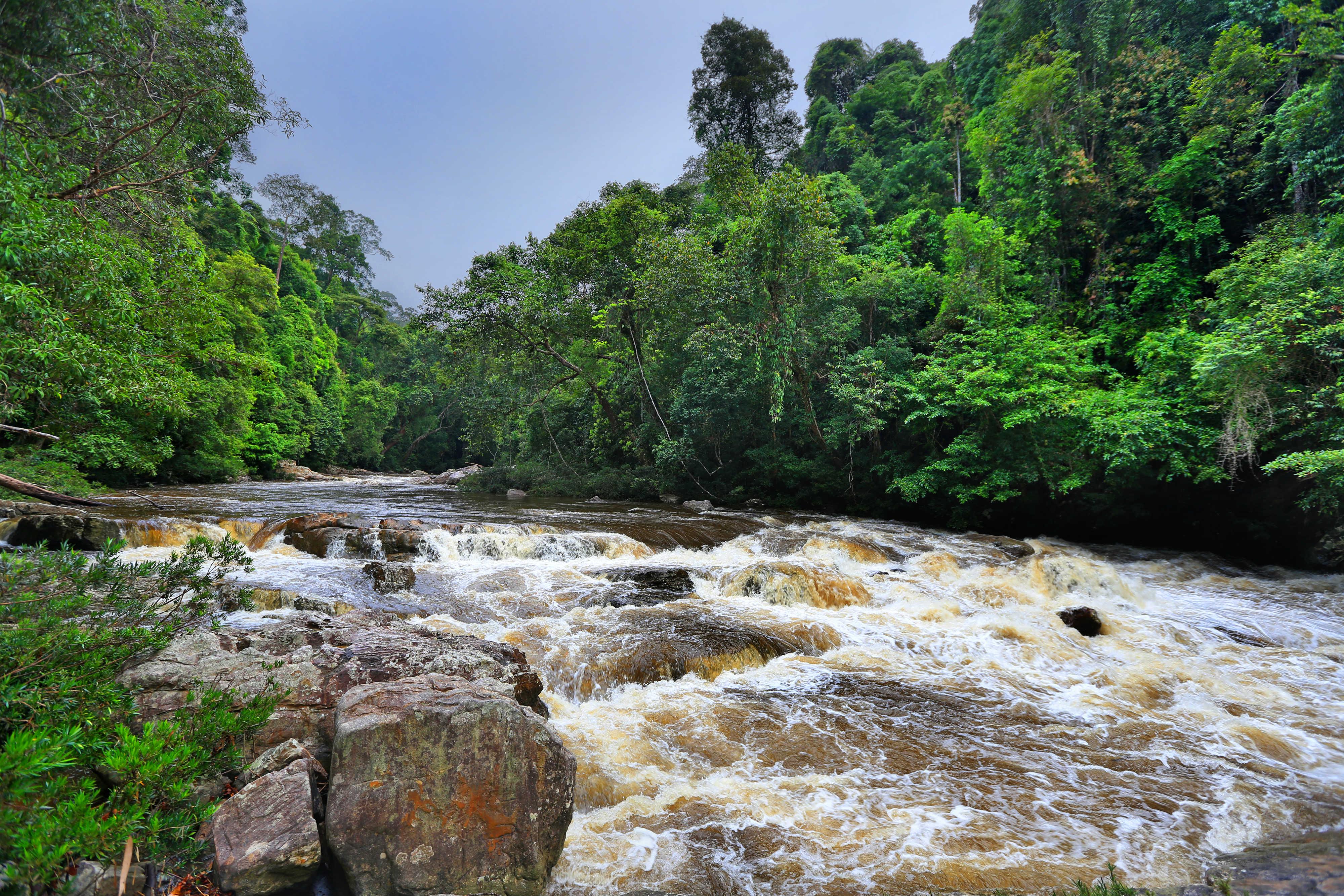 River_cascade