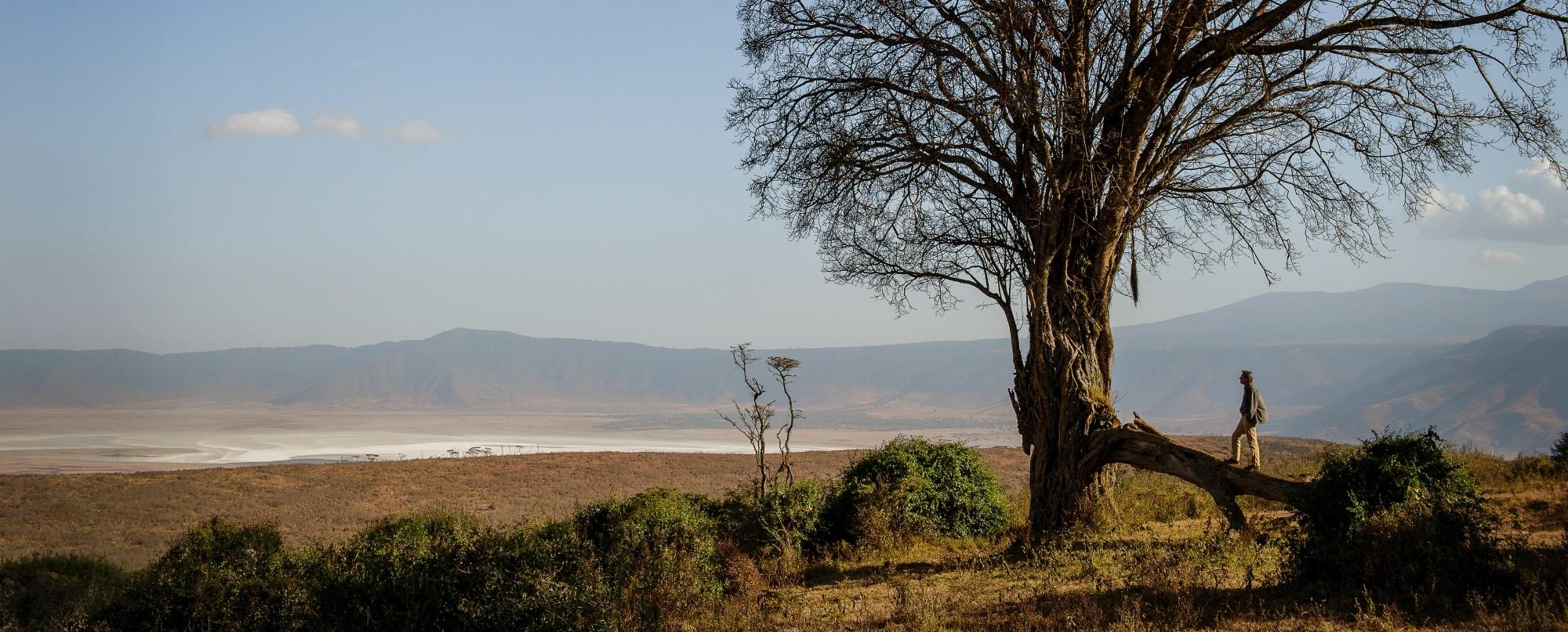 entamanu-ngorongoro-crater-view
