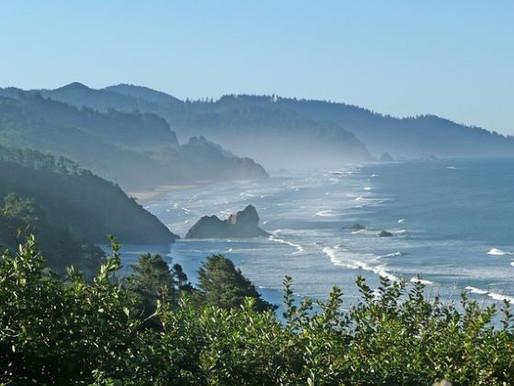 Tree Rings Provide Tsunami Evidence