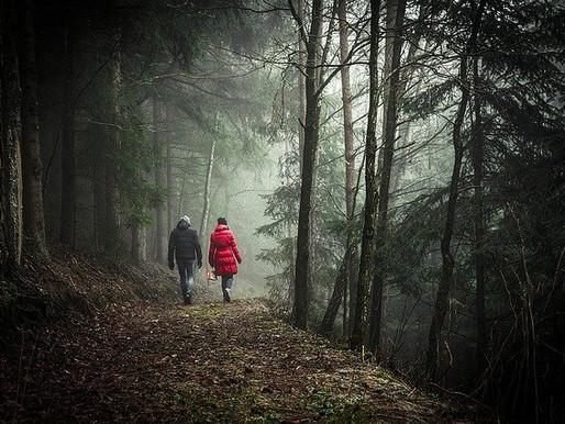 Walking has Brain Benefits Too