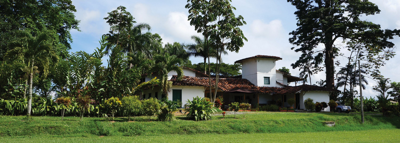 Hacienda-Bambusa-colombia