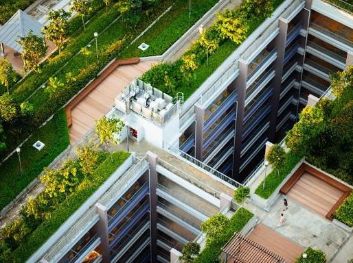 City Makes Green Space Mandatory