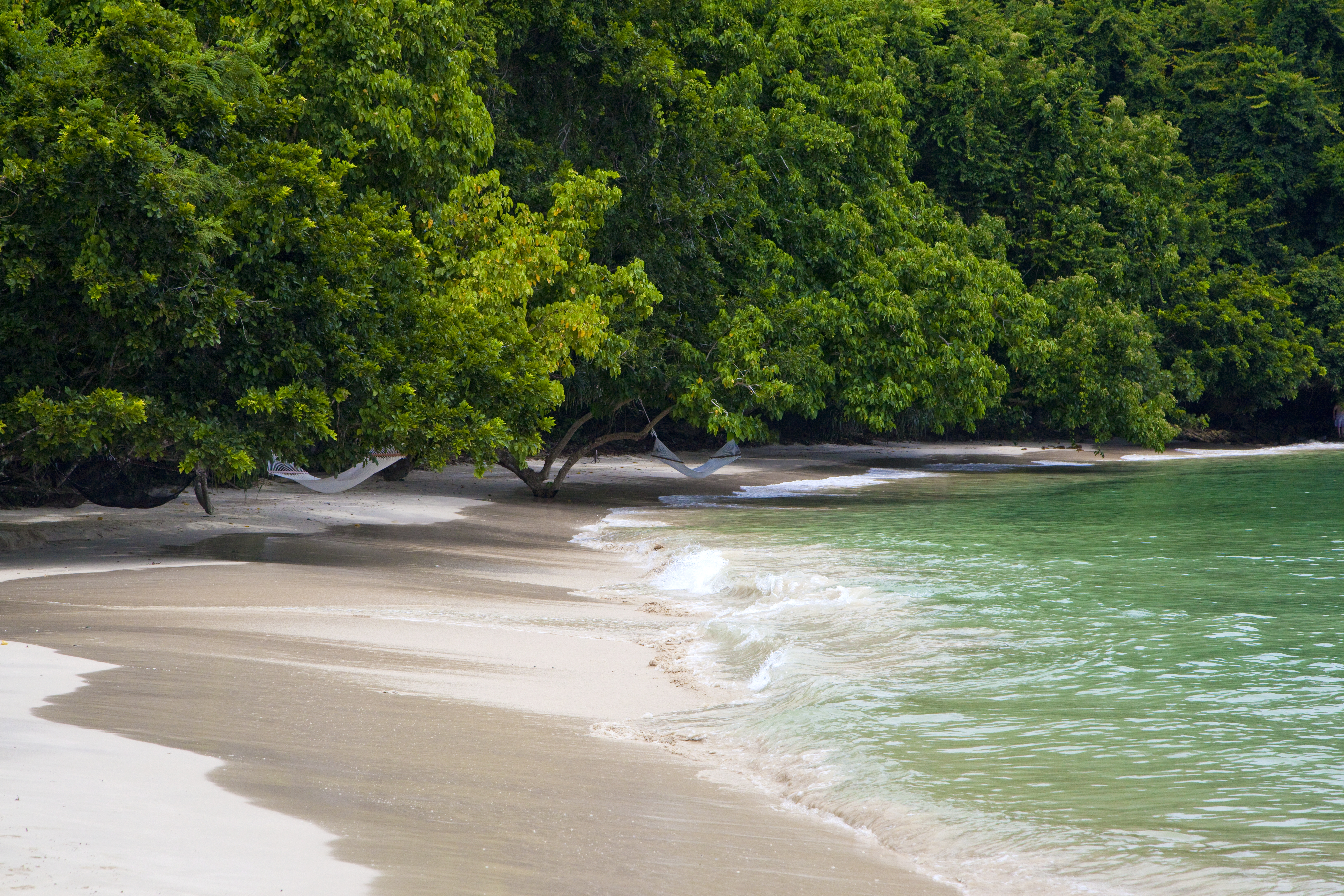 gaya-island-mangrove-beach