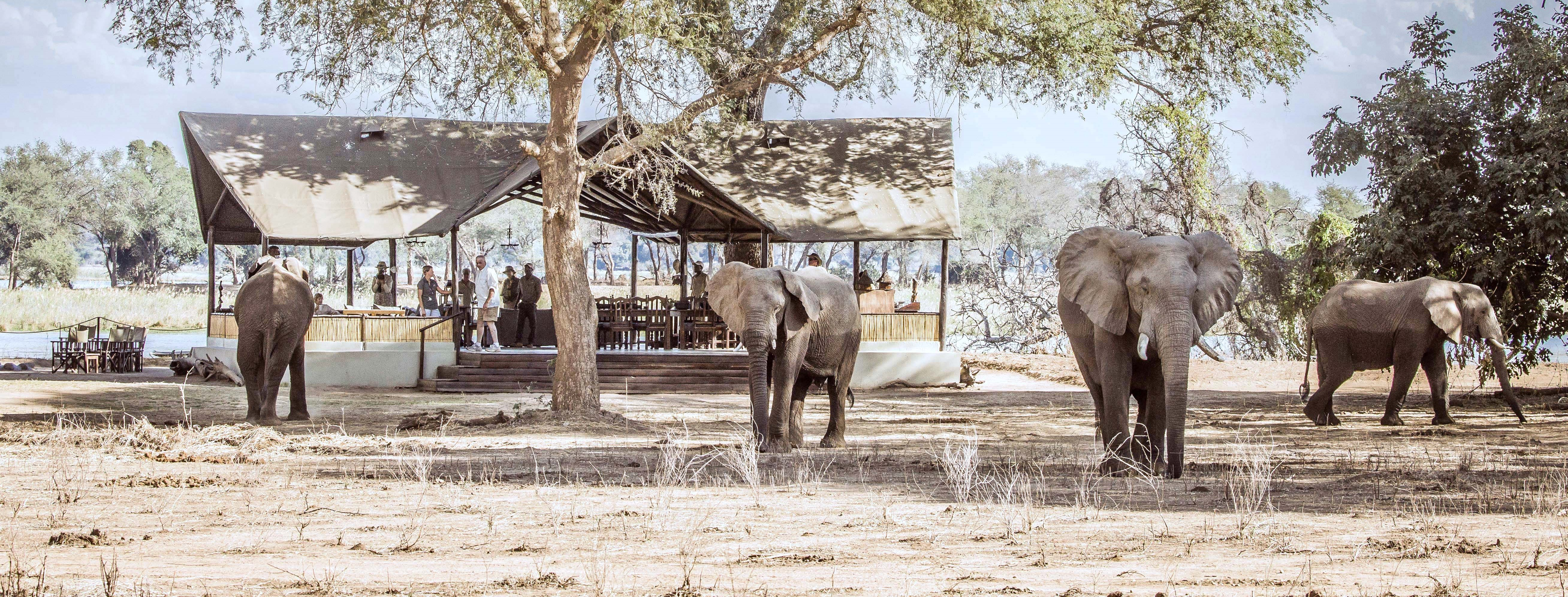 old-mondoro-safari-camp