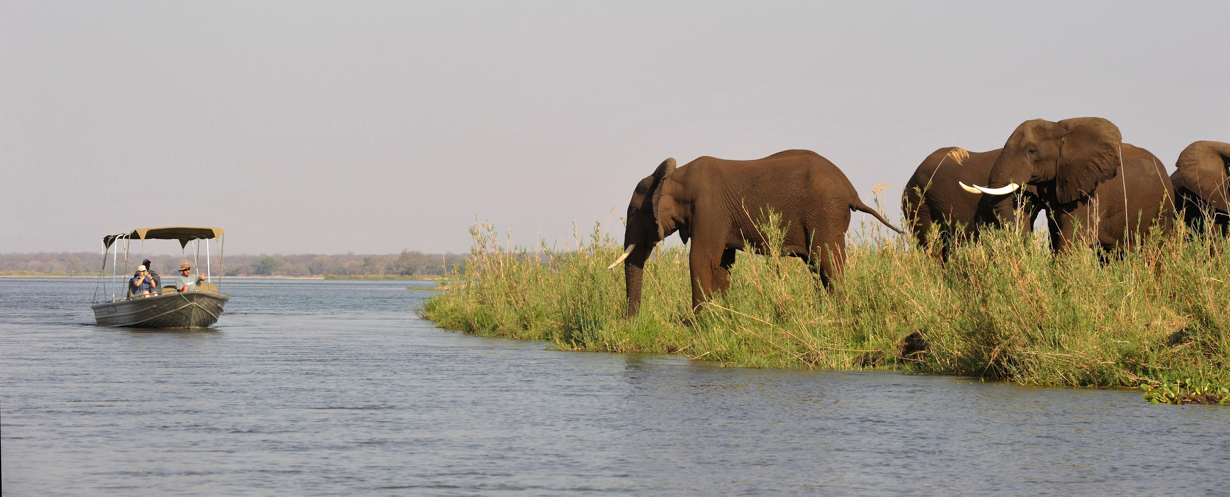 zambezi-river-cruise-old-mondoro-zambia.