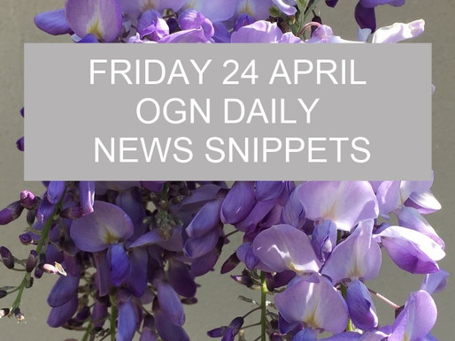 Good News Snippets