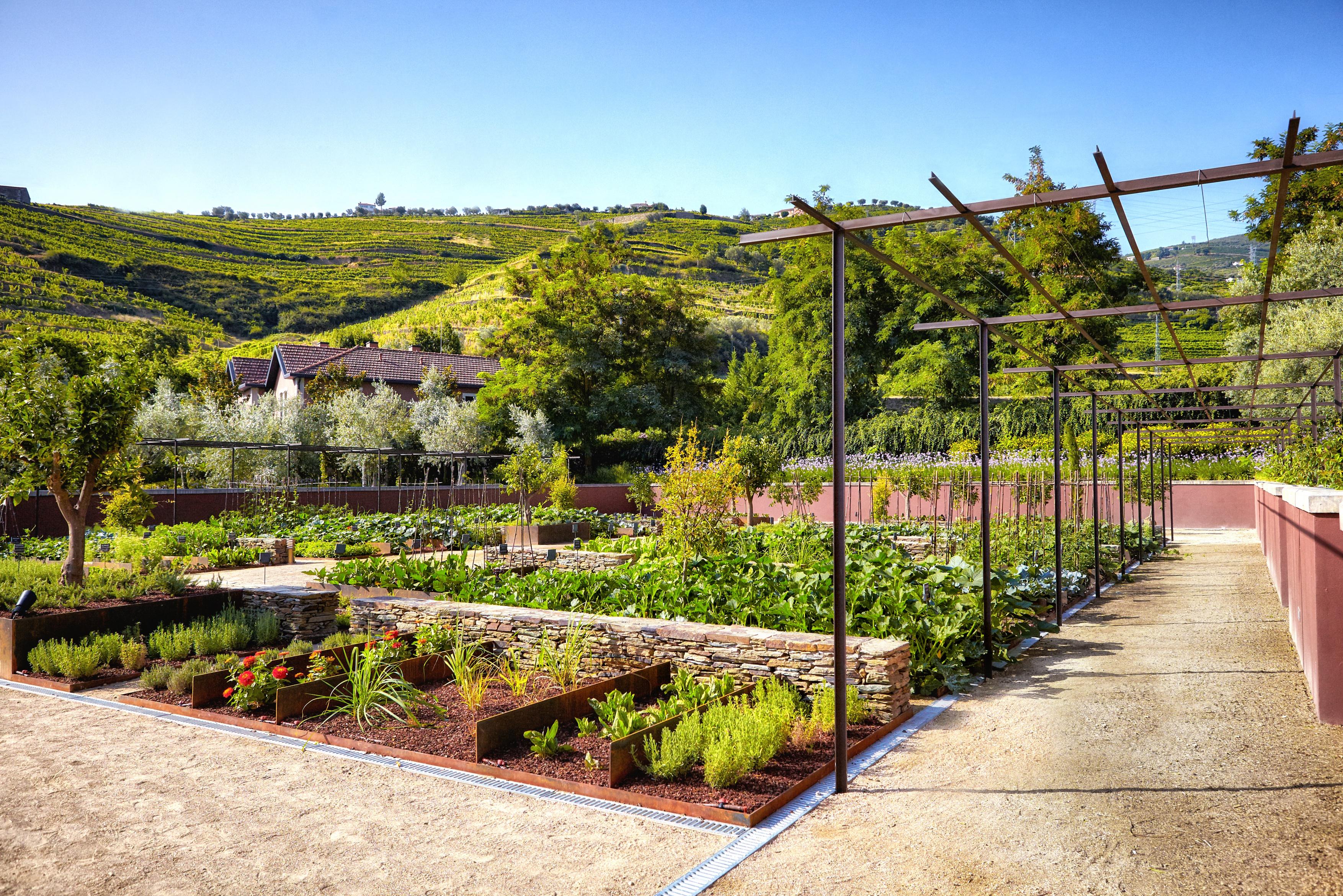 six-senses-douro-valley-garden